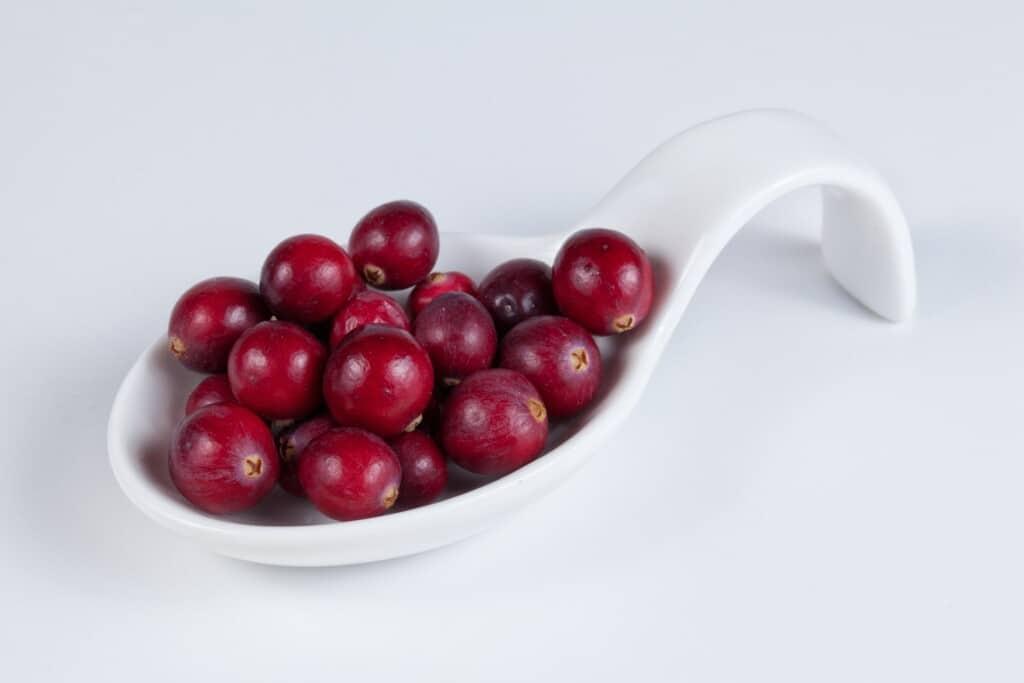 brusinky obsahují antioxidanty
